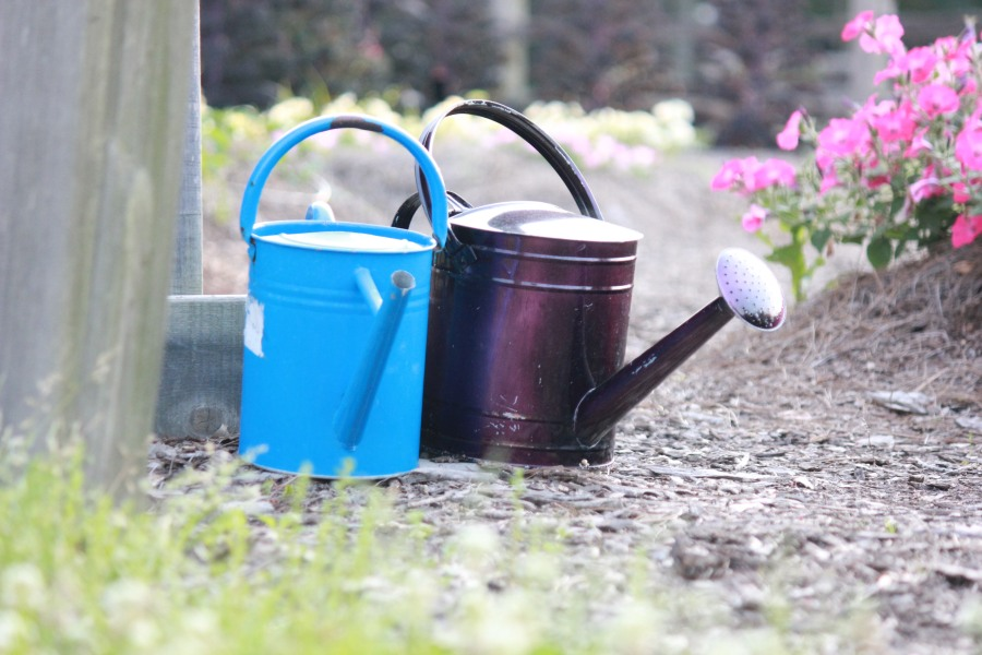 Two Watering Buckets