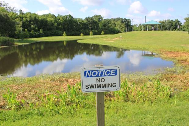 Perkins Road Community Park Baton Rouge Louisiana (59)