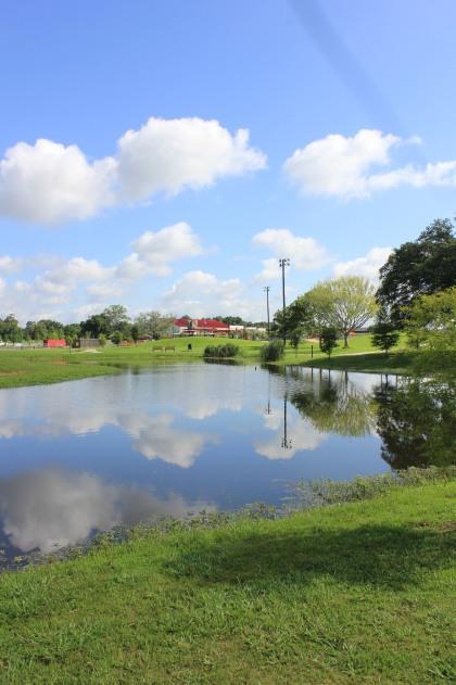 Perkins Road Community Park Baton Rouge Louisiana (66)