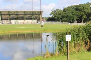 Perkins Road Community Park Baton Rouge Louisiana (76)
