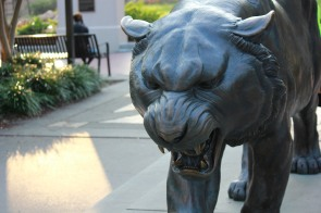 LSU Starts School August 25 2014 Fall (2)