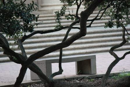 LSU Starts School August 25 2014 Fall (35)