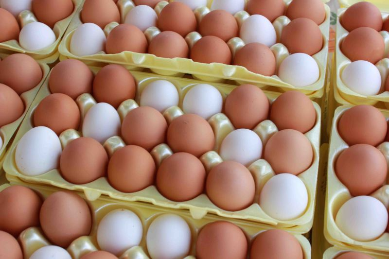 Fresh Eggs at Farmers Market Downtown on a Saturday in Baton Rouge