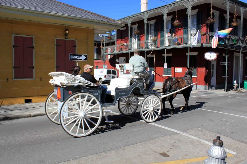 Royal Carriages Ride in NOLA at St Peter and Burgundy