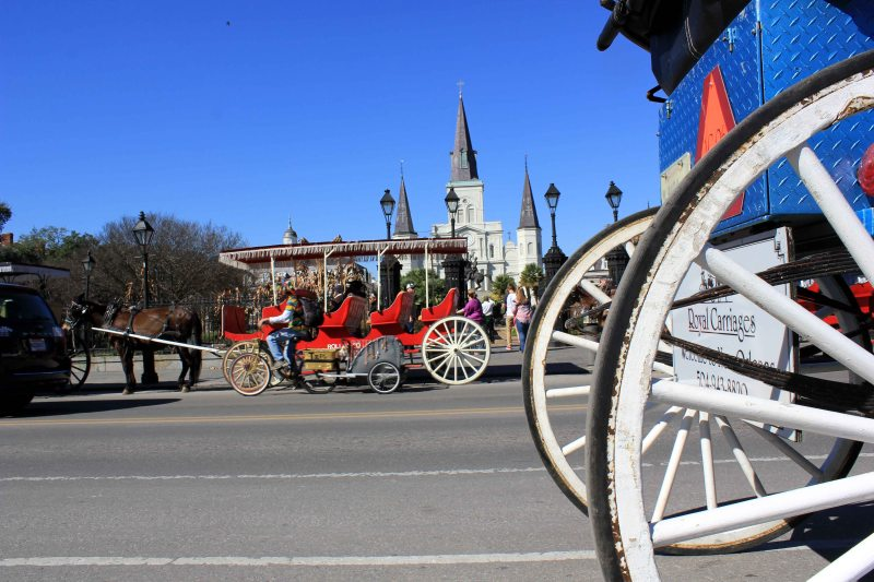 New Orleans Royal Carriages Photo by Kevin Woolsey