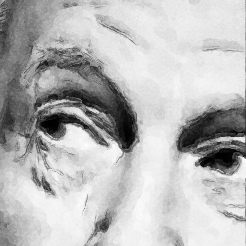 Frank Lloyd Wright Eyes